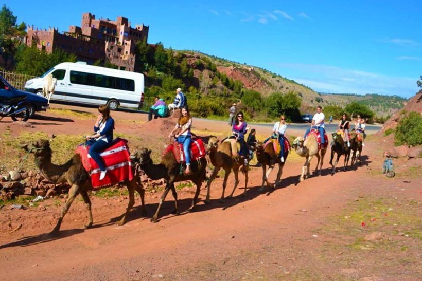 Shared Day trip to Ourika Valley from Marrakech, (3)