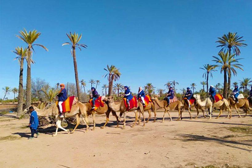 Marrakech Quad biking and Camel Ride (4)